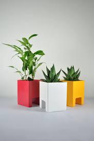 plantes pour bureau plante publicitaire et bien être au travail objet publicitaire et