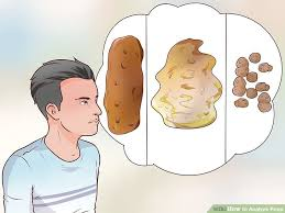 What Does Light Colored Stool Mean 4 Ways To Analyze Wikihow