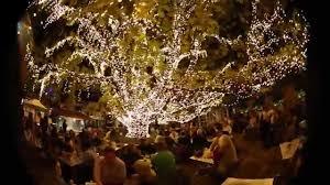 Firefly Led String Lights by Firefly Led Fairy Light System Youtube