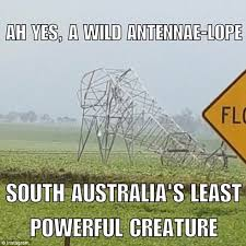 Australia Meme - south australians describe the worst storm in 50 years with memes