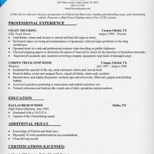 sample of driver resume resume of professional driver driver resume format doc template net truck driver resume examples and writing tips r j trucker blog