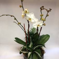 Order Flowers San Francisco - love and romance flower delivery in san francisco flowers of the