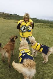 Dog Minion Halloween Costumes 53 Funny Dog Halloween Costumes Cute Ideas Pet Costumes