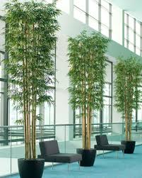 10 deluxe artificial bamboo silk tree for large spaces at