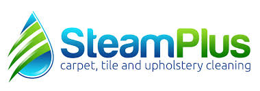 Carpet And Upholstery Cleaner Steam Plus Carpet And Floors Madison Wi Carpet Cleaning Floor Care