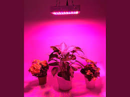 Plants That Dont Need Light Best Led Grow Lights 2017 For Plants Crops And Cannabis