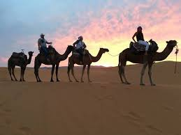 camel tents camel ride to tents picture of desert crew fes tripadvisor