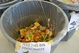 cafeteria waste project scrap environmental research