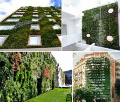 great green vertical wall vertical garden wall panels alices
