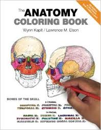 Anatomy And Physiology Pdf Free Download The Anatomy Coloring Book 9780321832016 Medicine U0026 Health