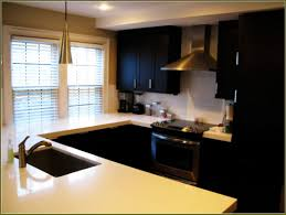 Cost To Paint Kitchen Cabinets Professionally by Cost To Paint Kitchen Cabinets Professionally Ideas With Spray