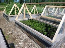 35 best raised beds images on pinterest raised beds raised bed
