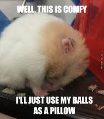 Good Nite Memes - balls i love you so much good night and sleep tight by