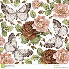 drawing branch with flowers and butterflies stock vector image