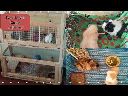 Home Made Rabbit Hutches Two Level Wooden Guinea Pig Rabbit Cage Tutorial Diy Homemade