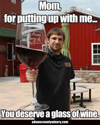 Red Wine Meme - funny wine pictures adams county winery adams county winery
