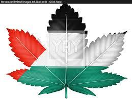 Palistinian Flag The Palestinian Flag Image Yayimages Com