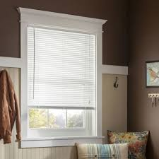 house window with white mini blind pet friendly window coverings