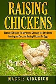 Chickens Backyard Backyard Farming Raising Chickens From Building Coops To