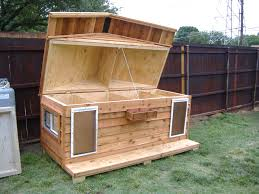 easy to build house plans how to build simple gabled roof doghouse tos diy dog house plans