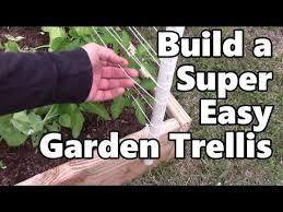 easy pea trellis build a super easy garden trellis for my peas youtube