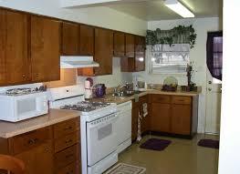 Kitchen Cabinet Software Free Alive Kitchen Cabinet Software Tags Free Kitchen Design Kitchen