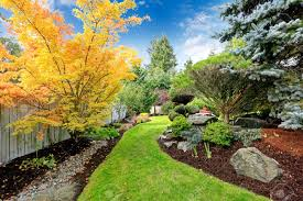 beautiful backyard landscape design view of colorful trees and