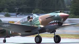 fast furious flying tiger p 40 low pass with great sound