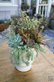 44 best small arrangements images on pinterest succulent
