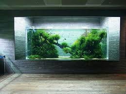 Aquascape Takashi Amano 17 Best Aquarium Images On Pinterest Aquarium Ideas Planted