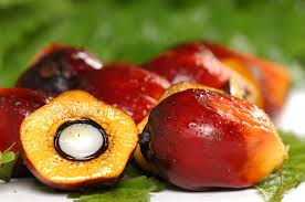 palm oil maybe not such a good idea after all human food project