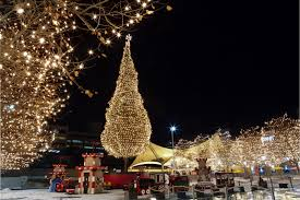 wellsuited christmas decorations kansas city alluring how about a