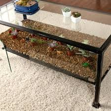 Glass Display Coffee Table Glass Display Coffee Table Glass Top Display Coffee Table