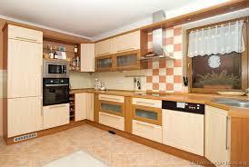 modern kitchen cabinet ideas european kitchen cabinets pictures and design ideas