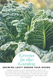 160 best cold season gardening images on pinterest gardening