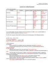 bio1a week 4 worksheet biology 1a general biology spring 2015