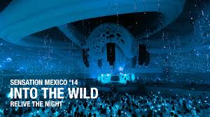 Bud Light Wallpaper Bud Light Sensation U0027into The Wild U0027 Mexico 2014 Aftermovie Youtube