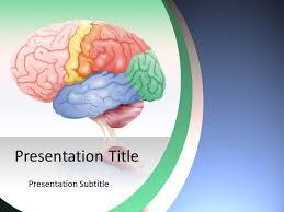 templates for powerpoint brain brain ppt templates etame mibawa co