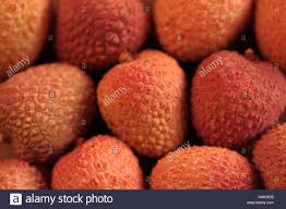 lychee fruit candy close up of a group of litchi lychee fruit pink chinese asia stock