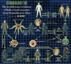 Monsters Vs Aliens Halloween Full Movie by Infographic Breaks Down Xenobiology From U0027prometheus U0027 Through