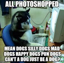 Dog Pun Meme - all photoshopped mean dogs silly dogs mad dogs happy dogs pun dogs