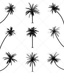 best 25 palm tree silhouette ideas on palm tree