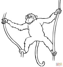 spider monkey hanging on tree coloring page free printable