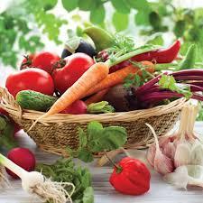 best fertilizer for vegetable garden compost the best fertilizer