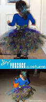 Peacock Halloween Costume Girls Diy Peacock Costume Tulle Tutu Peacock Feathers Bustle
