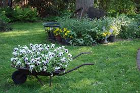 garden design garden design with growing cool season plants in