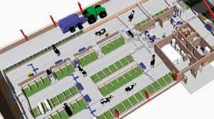Cattle Barns Designs Cow Comfort 16 Barn Planning Milkproduction Com