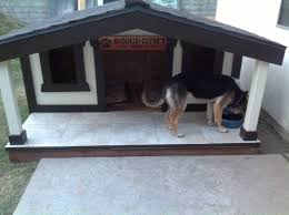 Small House Dogs My Dad Decided Our Old Store Bought Dog House Was Too Small So