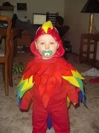 Parakeet Halloween Costume Parrot Costumes Costumes Fc