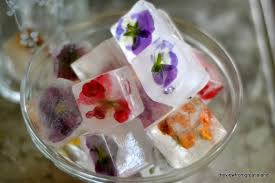 Decorative Ice Rings For Punch Edible Flower Ice Cubes The View From Great Island